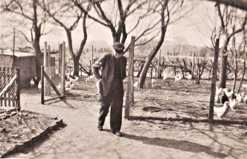 -124- Heinrich Scheper 1936