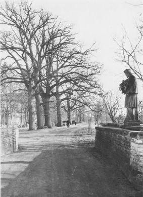 -69- Burgallee mit Nepomukbrücke