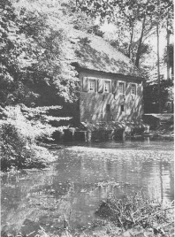 Wassermühle. Burg Dinklage