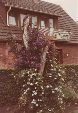 Friedenstraße Nr. 4 , Behnen, 1970er Jahre vom Grundstück Kröger aufgenommen