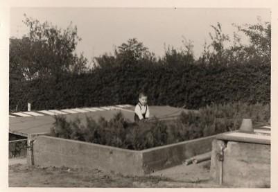 Frank Kröger in der Gärtnerei hinter dem Haus Friedenstraße Nr. 4