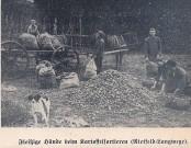 Nietfel_Langwege_um1934