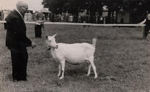 Fritz Kalvelage auf der Tierschau